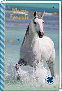 Cover-Bild zu Roß, Thea (Illustr.): Freundebuch - Pferdefreunde - Pferd am Meer