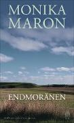 Cover-Bild zu Maron, Monika: Endmoränen (eBook)