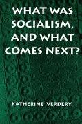 Cover-Bild zu What Was Socialism, and What Comes Next? von Verdery, Katherine
