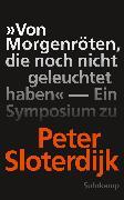 Cover-Bild zu Weibel, Peter (Hrsg.): »Von Morgenröten, die noch nicht geleuchtet haben« (eBook)