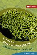 Cover-Bild zu Strauß, Markus: Köstliches von Sumpf- und Wasserpflanzen
