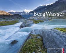 Cover-Bild zu Gerth, Roland: Faszination BergWasser