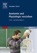 Cover-Bild zu Gehart, Rosemarie: Anatomie und Physiologie verstehen (eBook)