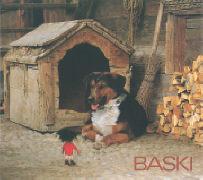 Cover-Bild zu Gohl, Heinrich: Baski 09. Mit Baski auf dem Bauernhof