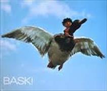 Cover-Bild zu Gohl, Heinrich: Baski 02. Baski's Flug mit der Wildente