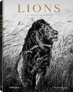 Cover-Bild zu Lions von Baheux, Laurent