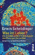 Cover-Bild zu Was ist Leben? (eBook) von Schrödinger, Erwin