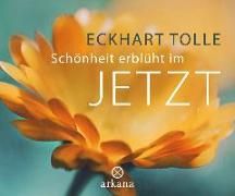 Cover-Bild zu Schönheit erblüht im Jetzt von Tolle, Eckhart