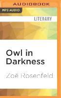 Cover-Bild zu OWL IN DARKNESS M von Rosenfeld, Zoe