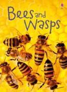 Cover-Bild zu Bees and Wasps von Maclaine, James