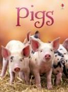 Cover-Bild zu Pigs von Maclaine, James