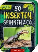 Cover-Bild zu 50 Insekten, Spinnen & Co von Haag, Holger