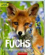 Cover-Bild zu So lebt der Fuchs von Noa, Sandra