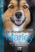 Cover-Bild zu Emming, Kerstin: Ein Wunder namens Marley