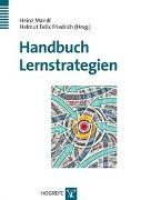 Cover-Bild zu Handbuch Lernstrategien von Mandl, Heinz (Hrsg.)