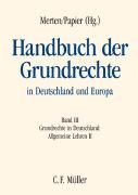 Cover-Bild zu Handbuch der Grundrechte in Deutschland und Europa von Axer, Peter