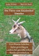 Cover-Bild zu Die Tiere vom Gnadenhof Eiweiler (eBook) von Braun, Jutta