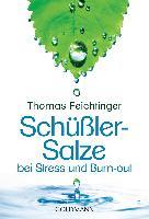 Cover-Bild zu Schüßler-Salze bei Stress und Burn-out von Feichtinger, Thomas