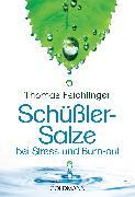 Cover-Bild zu Schüßler-Salze bei Stress und Burn-out (eBook) von Feichtinger, Thomas