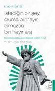 Cover-Bild zu Istedigin Bir Sey Olursa Bir Hayir, Olmazsa Bin Hayir Ara von Celaleddin-i Rumi, Mevlana