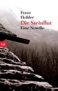 Cover-Bild zu Die Steinflut von Hohler, Franz