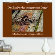 Cover-Bild zu Der Zauber der vergessenen Dinge (Premium, hochwertiger DIN A2 Wandkalender 2021, Kunstdruck in Hochglanz) von Ola Feix, Eva