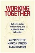 Cover-Bild zu Working Together von Poteete, Amy R.