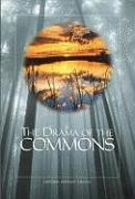 Cover-Bild zu The Drama of the Commons von National Research Council