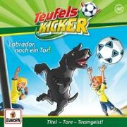 Cover-Bild zu Teufelskicker 66. Labrador, noch ein Tor!
