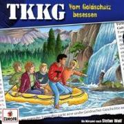 Cover-Bild zu TKKG 201. Vom Goldschatz besessen von Wolf, Stefan
