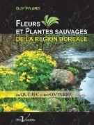 Cover-Bild zu Fleurs et plantes sauvages de la region boreale du Quebec et de l'Ontario (eBook) von Pinard, Guy