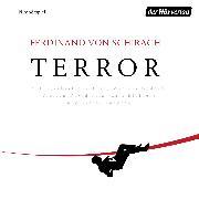 Cover-Bild zu Terror (Audio Download) von Schirach, Ferdinand von