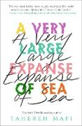 Cover-Bild zu Very Large Expanse of Sea (eBook) von Mafi, Tahereh