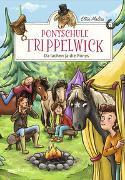 Cover-Bild zu Ponyschule Trippelwick - Da lachen ja die Ponys von Mattes, Ellie
