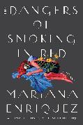 Cover-Bild zu The Dangers of Smoking in Bed von Enriquez, Mariana