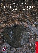Cover-Bild zu La piedra de toque (eBook) von Lévy-Leblond, Jean-Marc