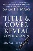Cover-Bild zu Tower of Dawn von Maas, Sarah J.