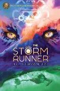 Cover-Bild zu Storm Runner 01 von Cervantes, J. C.