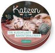 Cover-Bild zu Katzen. Ein kuscheliger Adventskalender