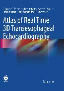 Cover-Bild zu Atlas of Real Time 3D Transesophageal Echocardiography (eBook) von de Castro, Stefano