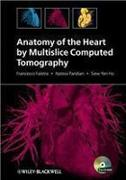 Cover-Bild zu Anatomy of the Heart by Multislice Computed Tomography (eBook) von Pandian, Natesa