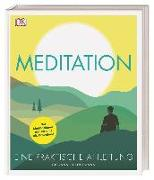 Cover-Bild zu Meditation von Dienstmann, Giovanni