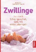 Cover-Bild zu Zwillinge (eBook) von Lersch, Petra