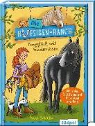 Cover-Bild zu Scheller, Anne: Die Hufeisen-Ranch - Ponyglück mit Hindernissen