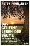 Cover-Bild zu Das geheime Leben der Bäume