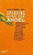 Cover-Bild zu Hornby, Nick: Speaking with the Angel