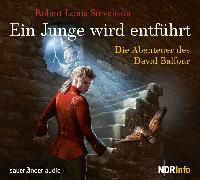 Cover-Bild zu Ein Junge wird entführt von Stevenson, Robert Louis