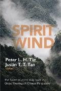 Cover-Bild zu Tie, Peter L. H. (Hrsg.): Spirit Wind (eBook)