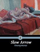 Cover-Bild zu Slow Arrow (eBook) von Anonymous