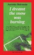 Cover-Bild zu I Dreamt the Snow was Burning von Skármeta, Antonio